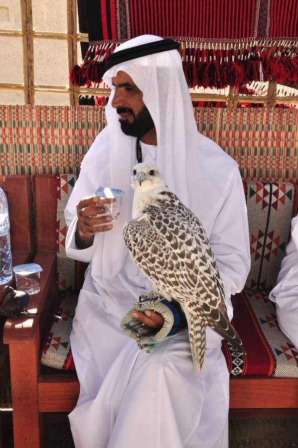 Arab Falconer. Taking part in an international falconry festival here in Abu Dhabi, UAE stock photos