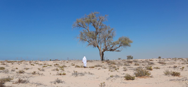 Arab man in desert royalty free stock image