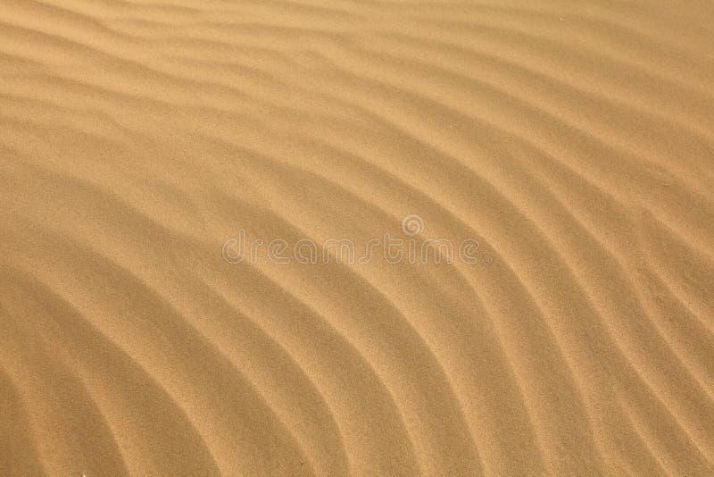 araben ripples sanden royaltyfri foto