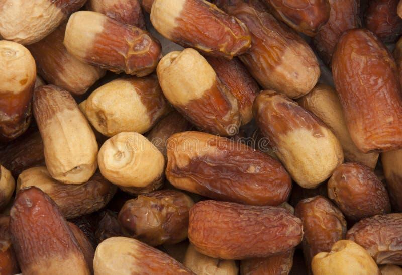 Download Arabian Dates Crop Texture stock image. Image of fruit - 20652005