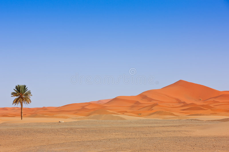 Download Arabian Sand Dunes And Fountain Stock Photo - Image: 8516236