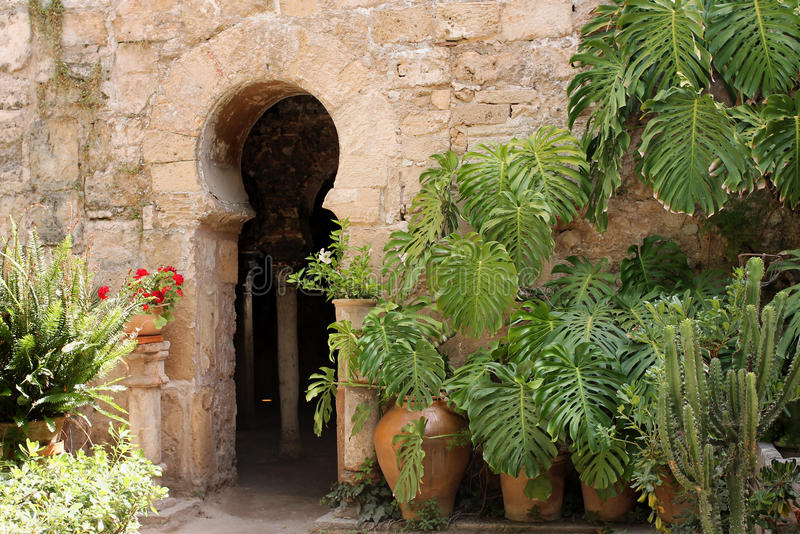 Arabic bath stock photo. Image of garden, doorway, ancient - 25835800