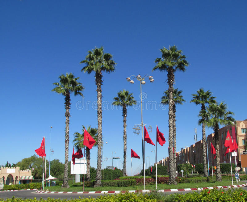 Arabic city square with palms. And lots of red flags of Morocco. Marakkesh, Morocco royalty free stock photos