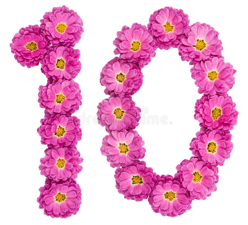 Free Arabic Numeral 10, Ten, From Flowers Of Chrysanthemum, Isolated Royalty Free Stock Image - 106992236