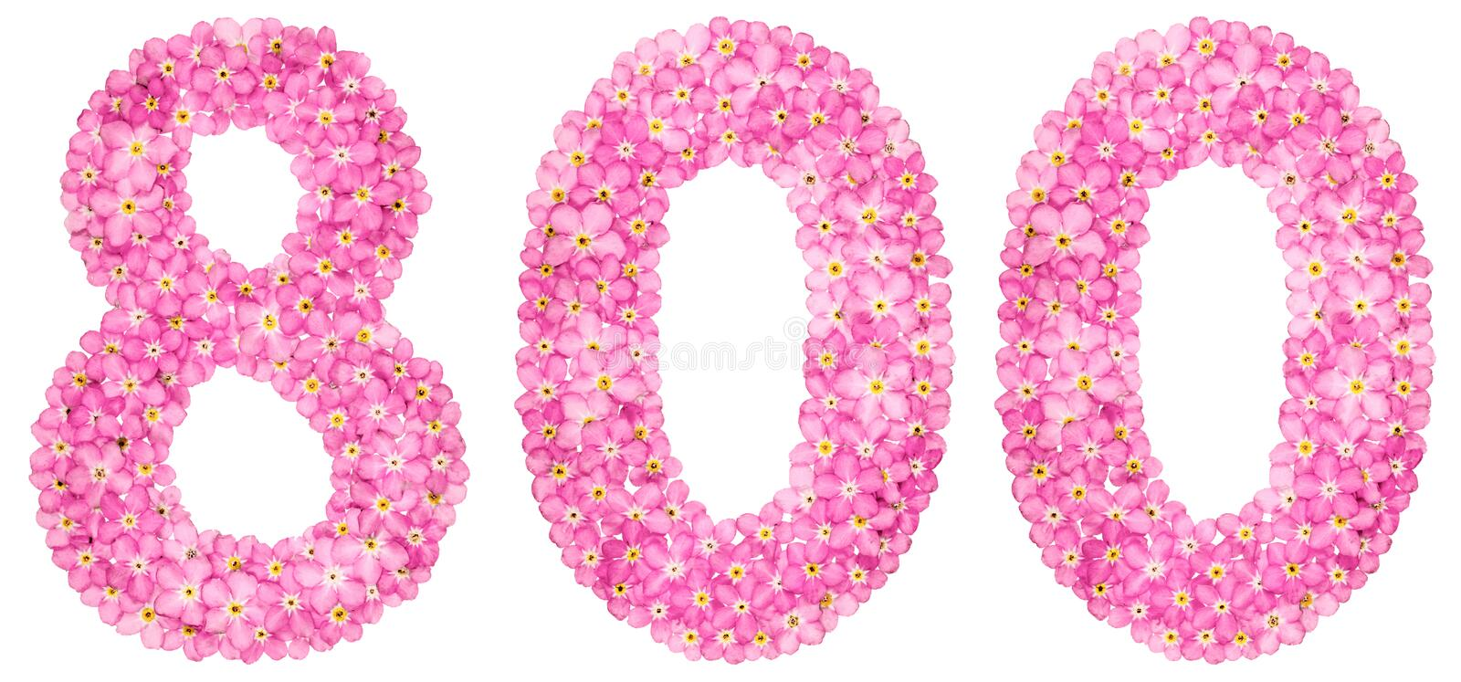 Arabic numeral 800, eight hundred, from pink forget-me-not flowers, isolated on white background stock photography