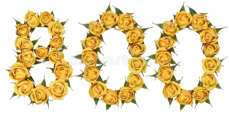 Arabic numeral 800, eight hundred, from yellow flowers of rose,. Isolated on white background royalty free stock photo