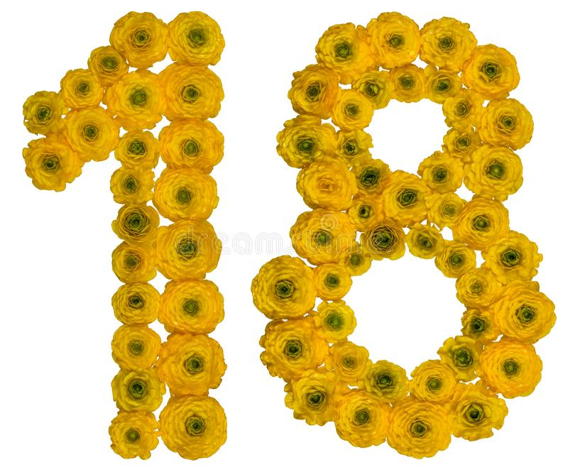 Arabic numeral 18, eighteen, from yellow flowers of buttercup,. Isolated on white background royalty free stock photography