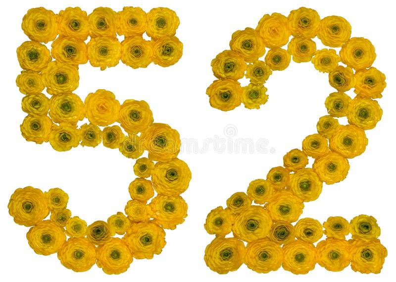 Arabic numeral 52, fifty two, from yellow flowers of buttercup,. Isolated on white background stock photography