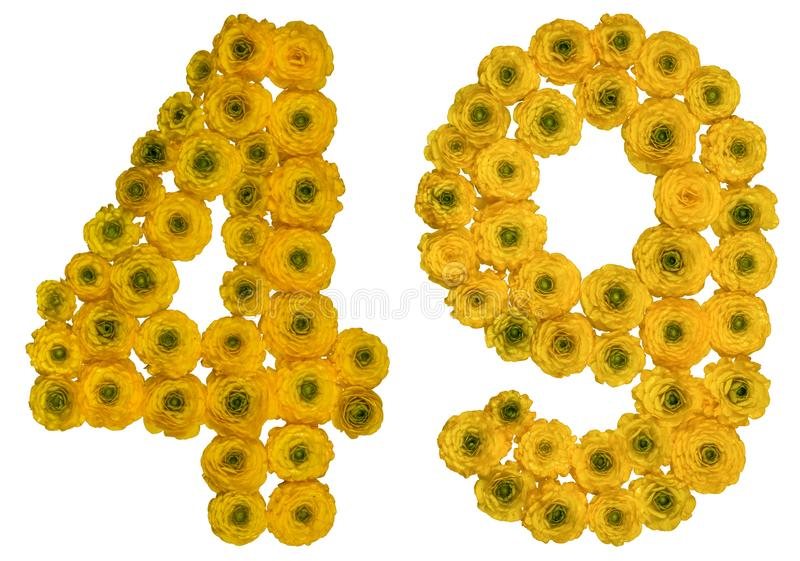 Arabic numeral 49, forty nine, from yellow flowers of buttercup, isolated on white background royalty free stock photos