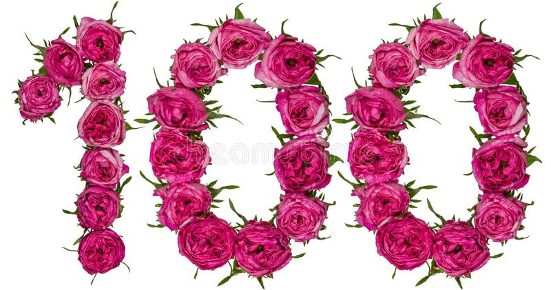 Arabic numeral 100, one hundred, from red flowers of rose, isolated on white background royalty free stock photo