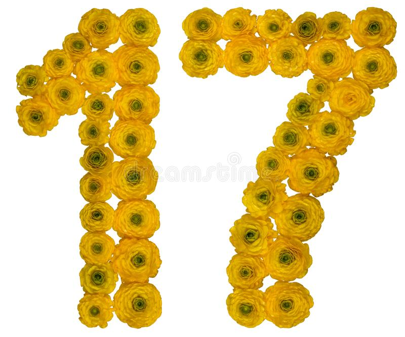 Arabic numeral 17, seventeen, from yellow flowers of buttercup,. Isolated on white background royalty free stock photography