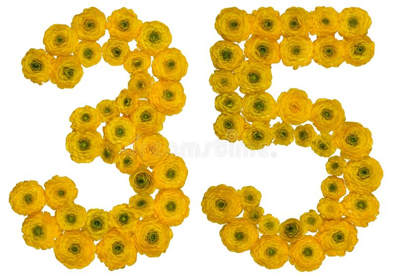 Arabic numeral 35, thirty five, from yellow flowers of buttercup. Isolated on white background royalty free stock image