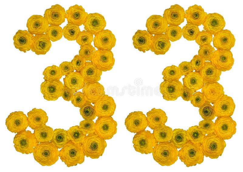 Arabic numeral 33, thirty three, from yellow flowers of buttercup, isolated on white background stock photo