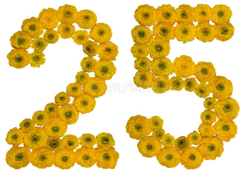 Arabic numeral 25, twenty five, from yellow flowers of buttercup. Isolated on white background stock photography