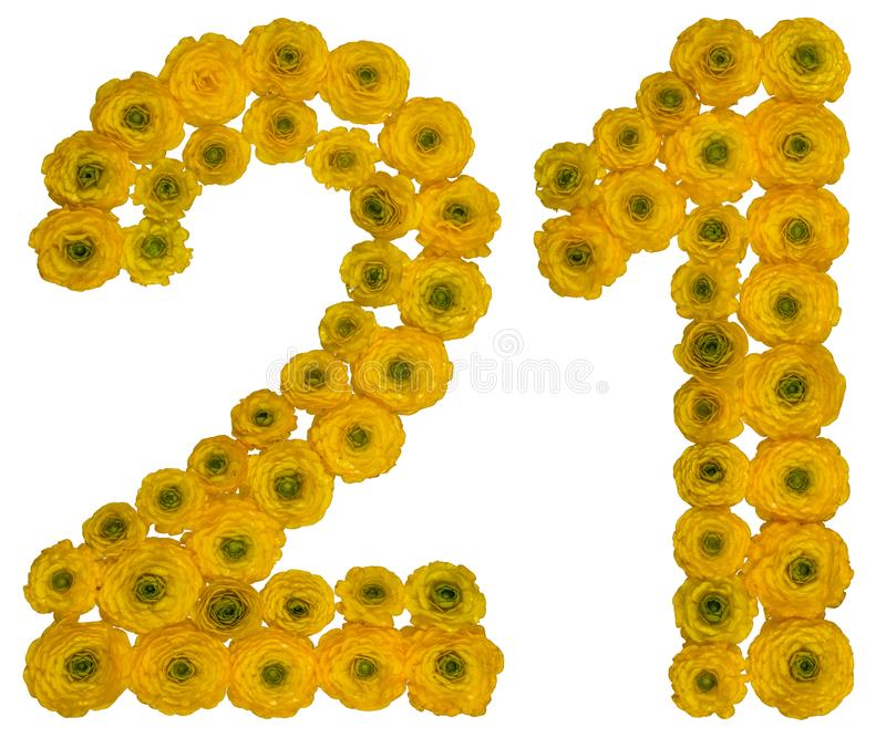 Arabic numeral 21, twenty one, from yellow flowers of buttercup, isolated on white background royalty free stock images
