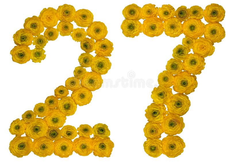Arabic numeral 27, twenty seven, from yellow flowers of buttercup, isolated on white background stock photography
