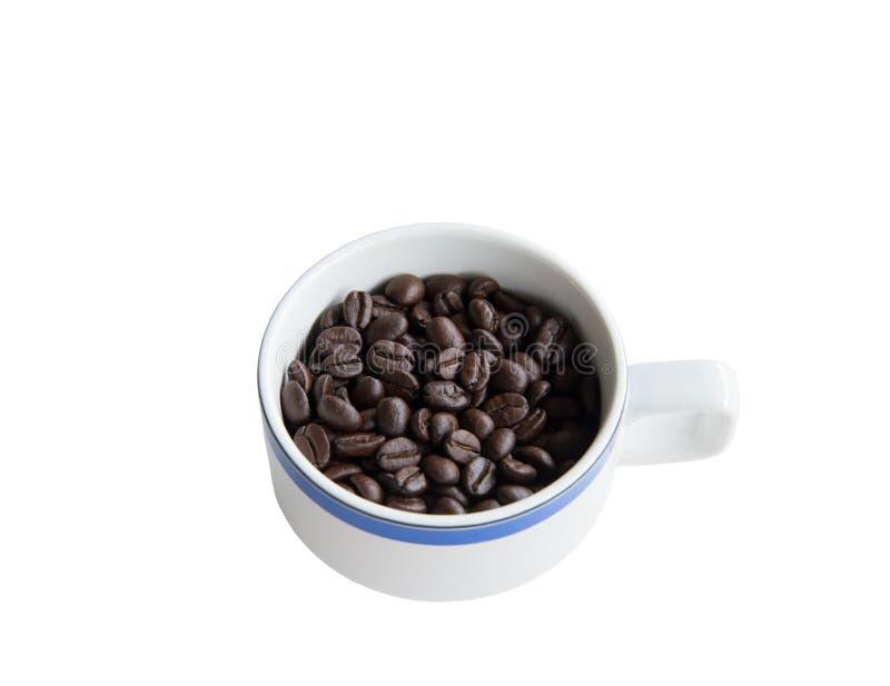 Arabica φασόλι καφέ στο άσπρο κεραμικό φλυτζάνι στοκ φωτογραφίες