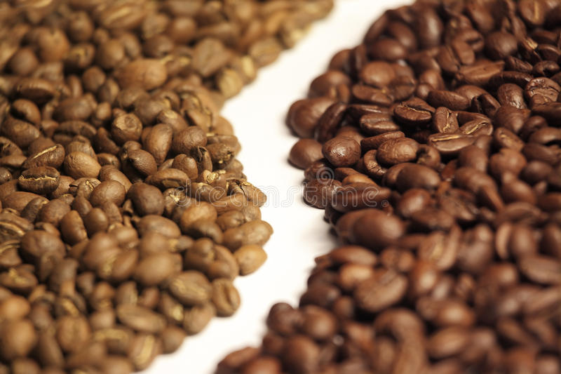Arabica and robusta coffee beans. Side by side royalty free stock image