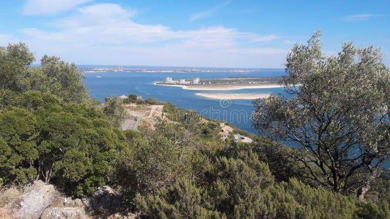 Arabida de Sierra fotografía de archivo libre de regalías