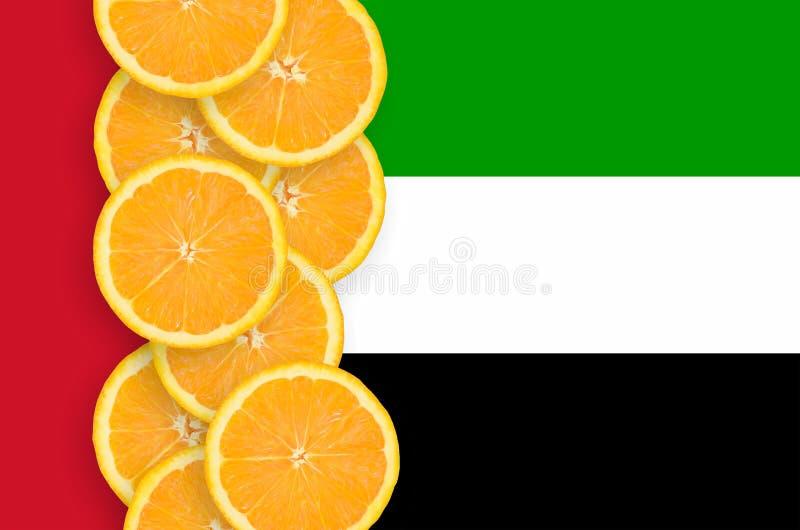 Arabische Emirate-Flagge und vertikale Reihe der Zitrusfruchtscheiben stockfoto