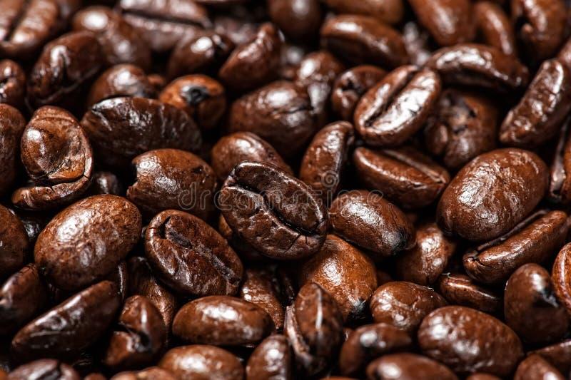 Arabische Kaffeebohnen lizenzfreies stockbild