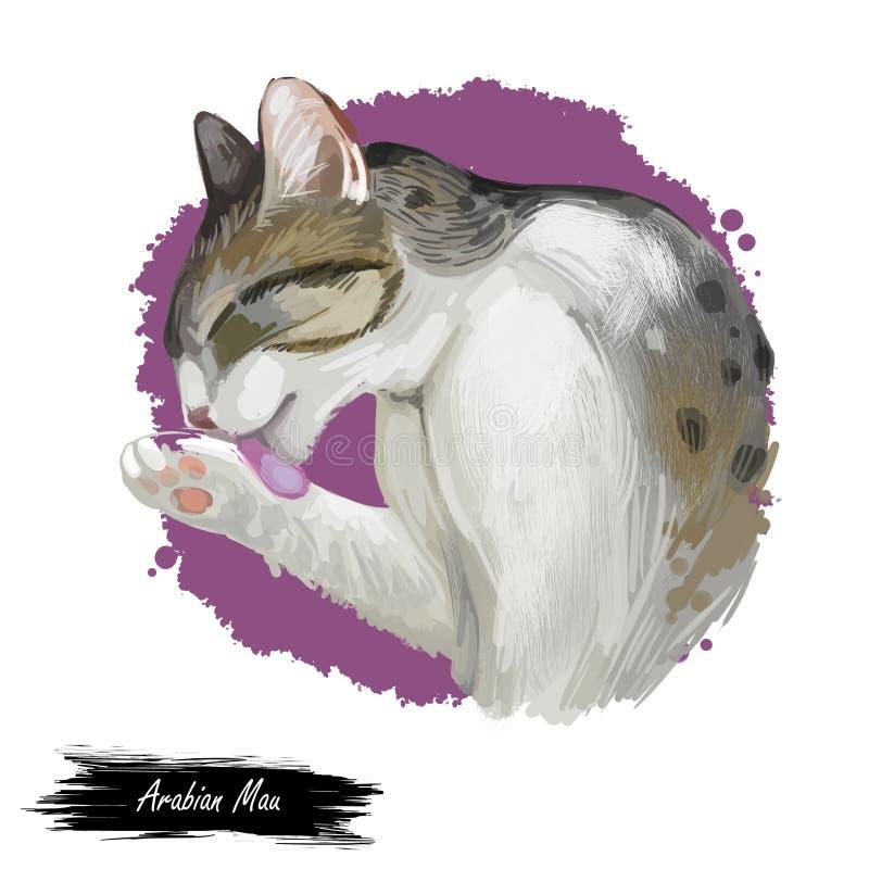 Arabische oder Ägypter Mau-Katze lokalisiert auf weißem Hintergrund Digital-Kunstillustration der Handgezogenen Miezekatze Kurzha stock abbildung