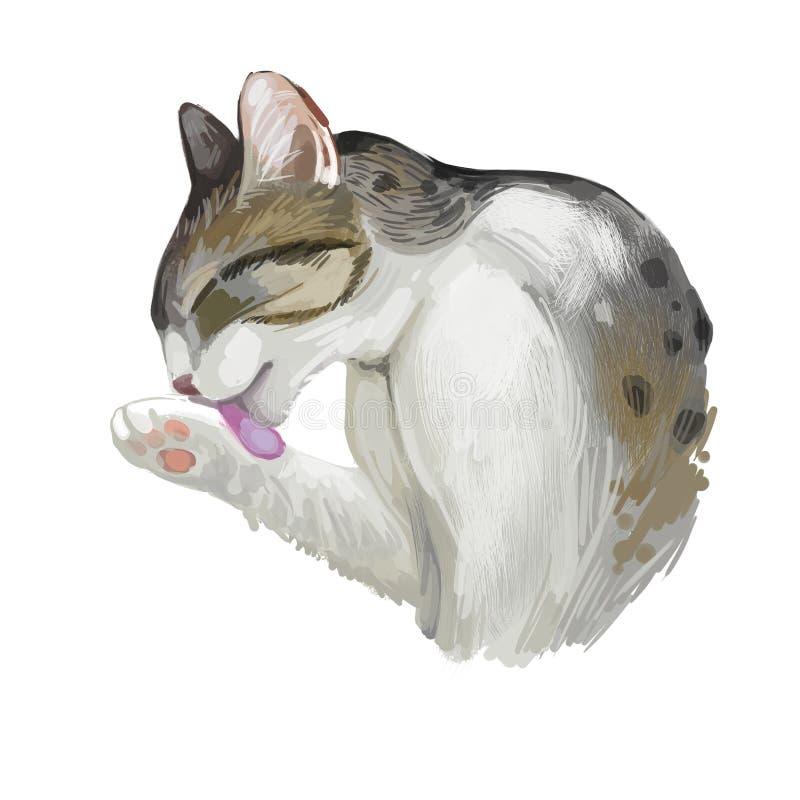 Arabische oder Ägypter Mau-Katze lokalisiert auf weißem Hintergrund Digital-Kunstillustration der Handgezogenen Miezekatze Kätzch stock abbildung