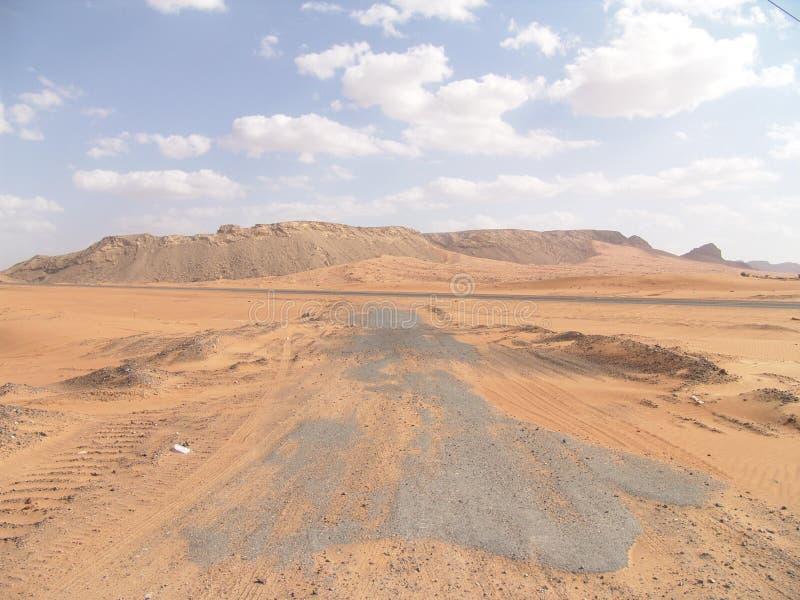 Arabische Wüste Lizenzfreies Stockbild