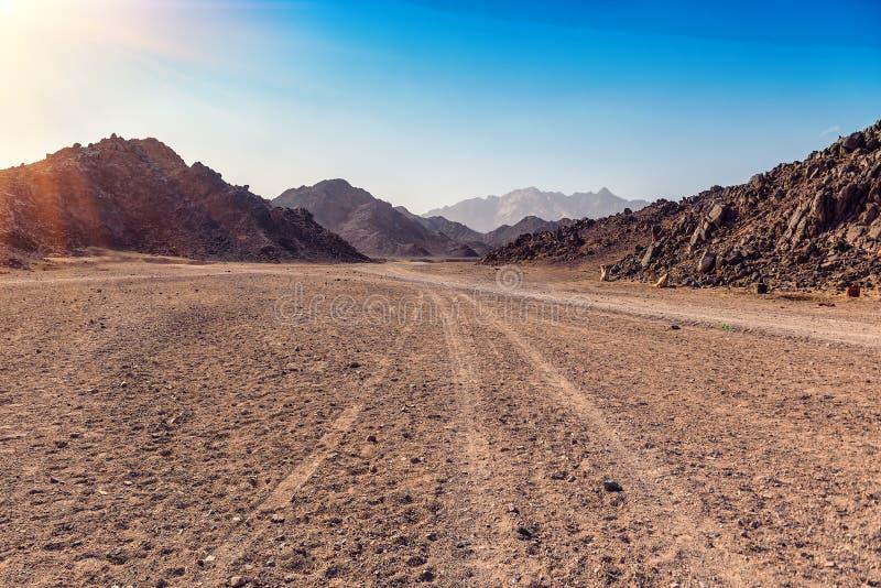 Arabische woestijn in Egypte stock foto