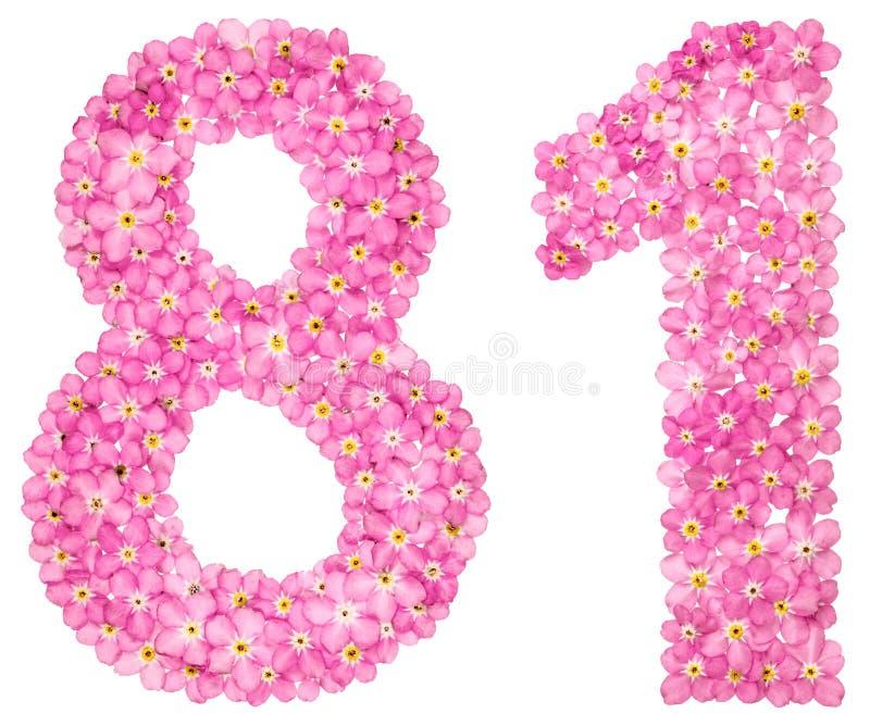 Arabische Ziffer 81, achtzig eins, vom rosa Vergissmeinnicht blüht, stockbilder
