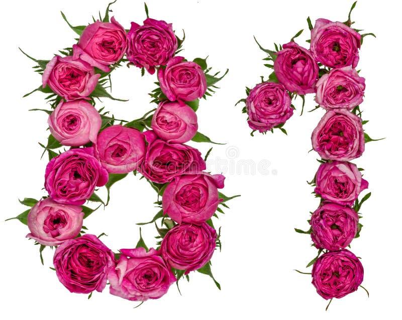 Arabische Ziffer 81, achtzig eins, von den roten Blumen der Rose, Isolat lizenzfreie stockfotos