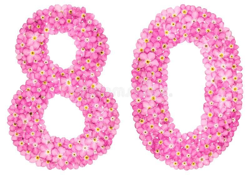 Arabische Ziffer 80, achtzig, vom rosa Vergissmeinnicht blüht, Isolator stockfotografie