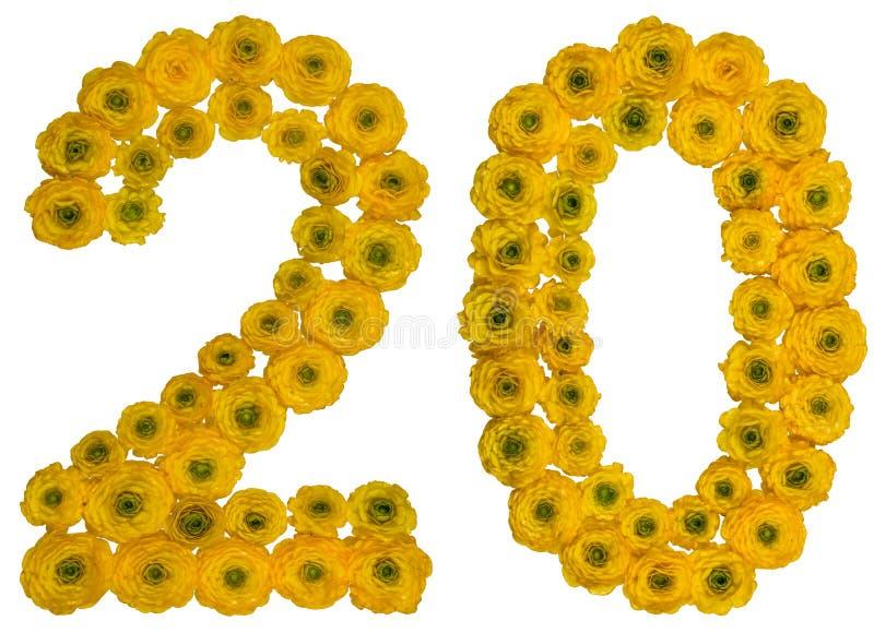 Arabische Ziffer 20, zwanzig, von den gelben Blumen der Butterblume, ISO stockbilder