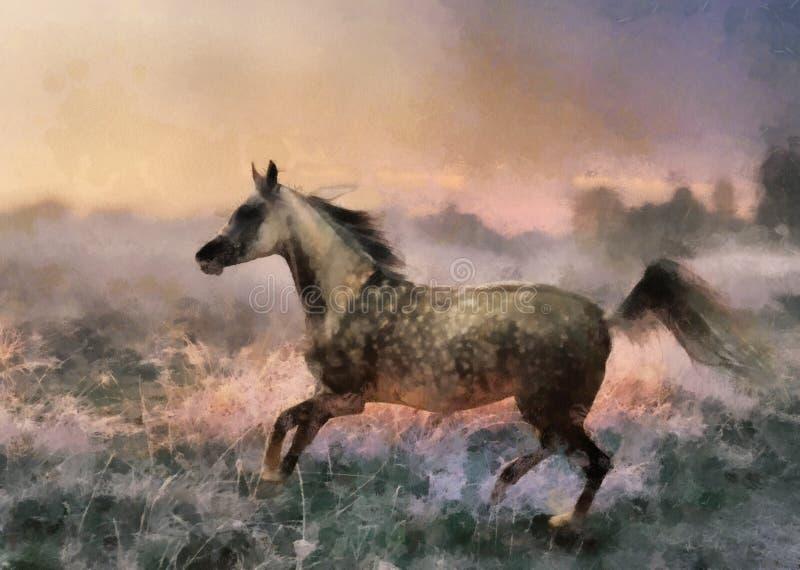 arabisk grå häst royaltyfri illustrationer