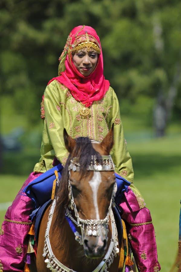 Download Arabisk häst redaktionell fotografering för bildbyråer. Bild av originellt - 19794984