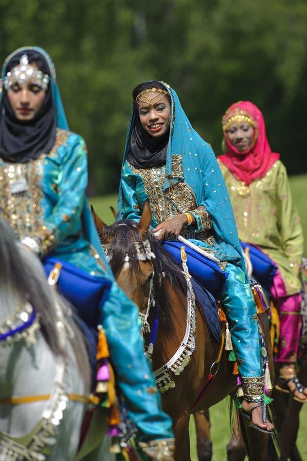 Download Arabisk häst redaktionell fotografering för bildbyråer. Bild av historia - 19795004