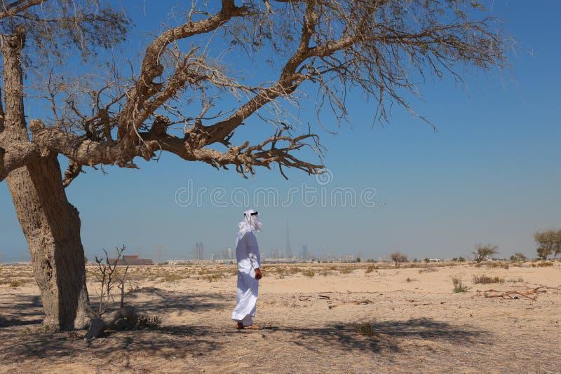 Arabisk man i öken arkivfoton