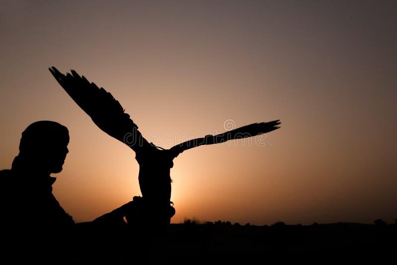 Arabisk man med jaktfalken arkivfoton