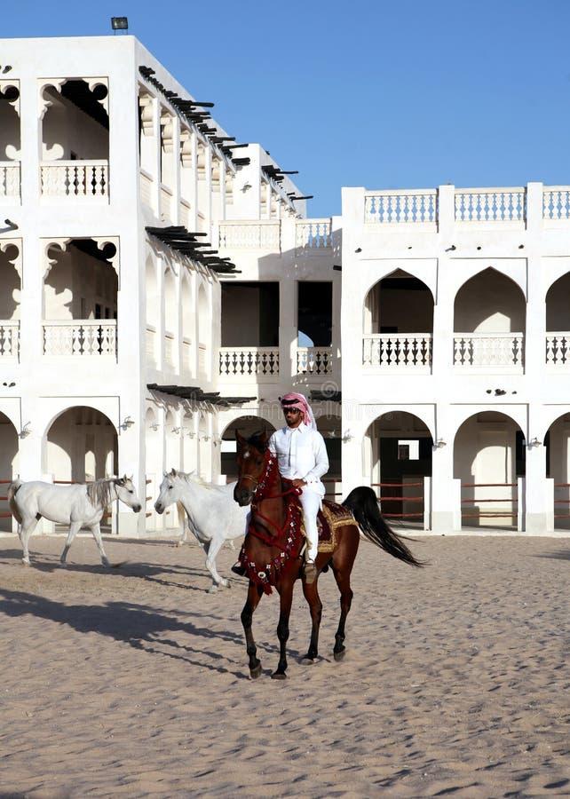 arabisk ryttarevertical royaltyfria foton