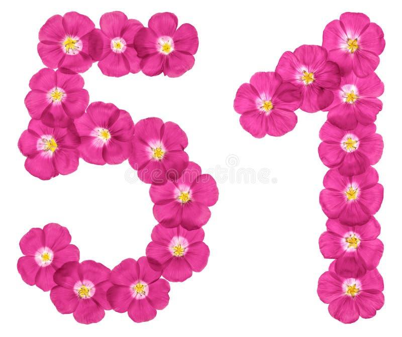 Arabiskt tal 51, femtio en, från rosa blommor av lin som isoleras på vit bakgrund vektor illustrationer