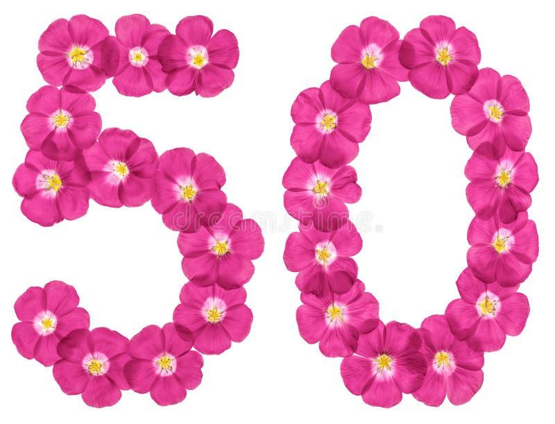 Arabiskt tal 50, femtio, från rosa blommor av lin som isoleras på vit bakgrund stock illustrationer