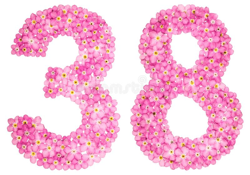 Arabiskt tal 38, trettio, från rosa förgätmigej blommar royaltyfri illustrationer