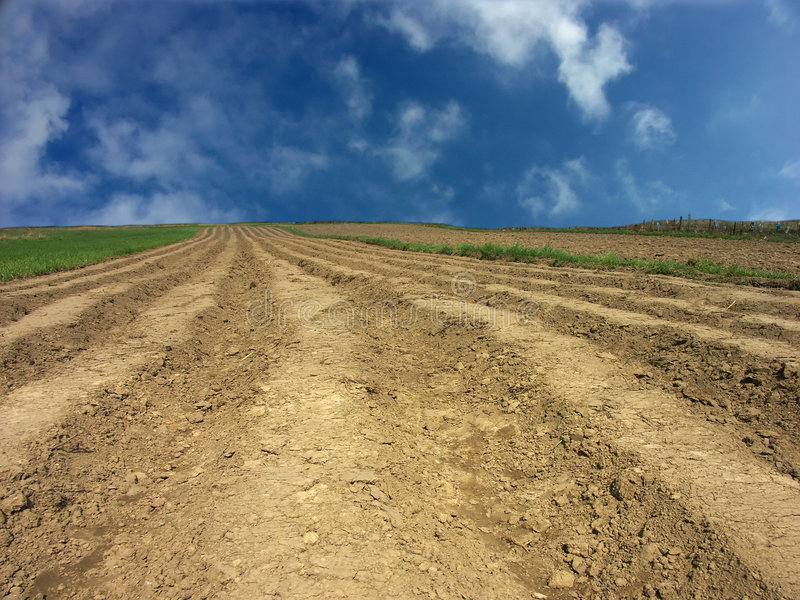 Download Arable field stock image. Image of country, planting, earth - 112129