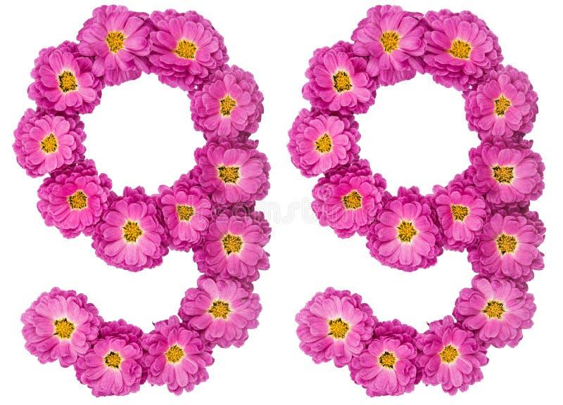 Arabski liczebnik 99, dziewięćdziesiąt dziewięć, od kwiatów chryzantema, i zdjęcie royalty free