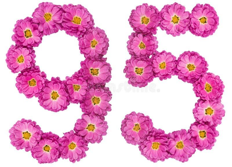 Arabski liczebnik 95, dziewięćdziesiąt pięć, od kwiatów chryzantema, i zdjęcie stock