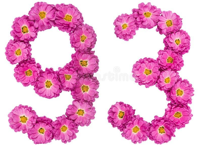 Arabski liczebnik 93, dziewięćdziesiąt trzy, od kwiatów chryzantema, zdjęcia stock