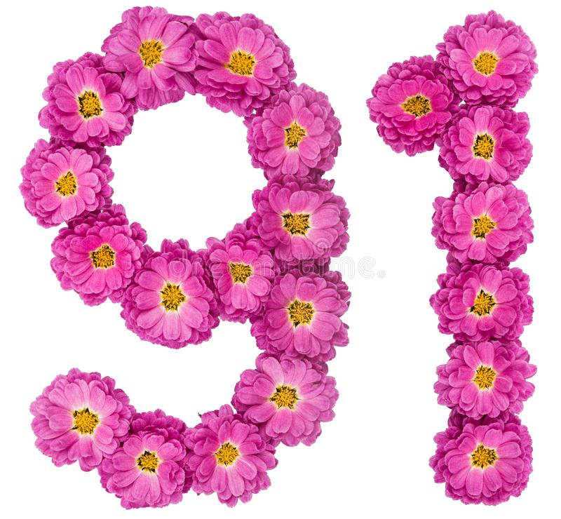 Arabski liczebnik 91, dziewiećdziesiąt jeden, od kwiatów chryzantema, jest zdjęcie royalty free