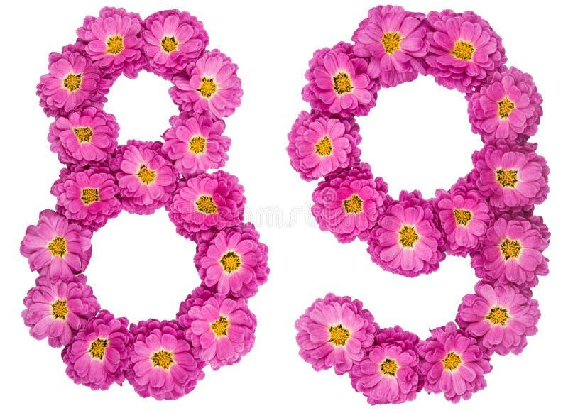 Arabski liczebnik 89, osiemdziesiąt dziewięć, od kwiatów chryzantema, i obraz royalty free