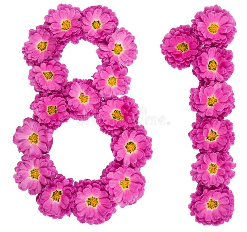 Arabski liczebnik 81, osiemdziesiąt jeden, od kwiatów chryzantema, jest fotografia royalty free