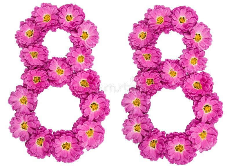 Arabski liczebnik 88, osiemdziesiąt osiem, od kwiatów chryzantema, obraz stock